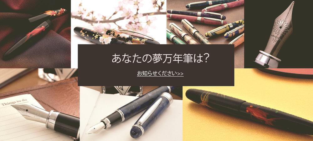 survey jp.jpg