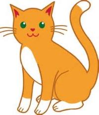 kitten 4.png