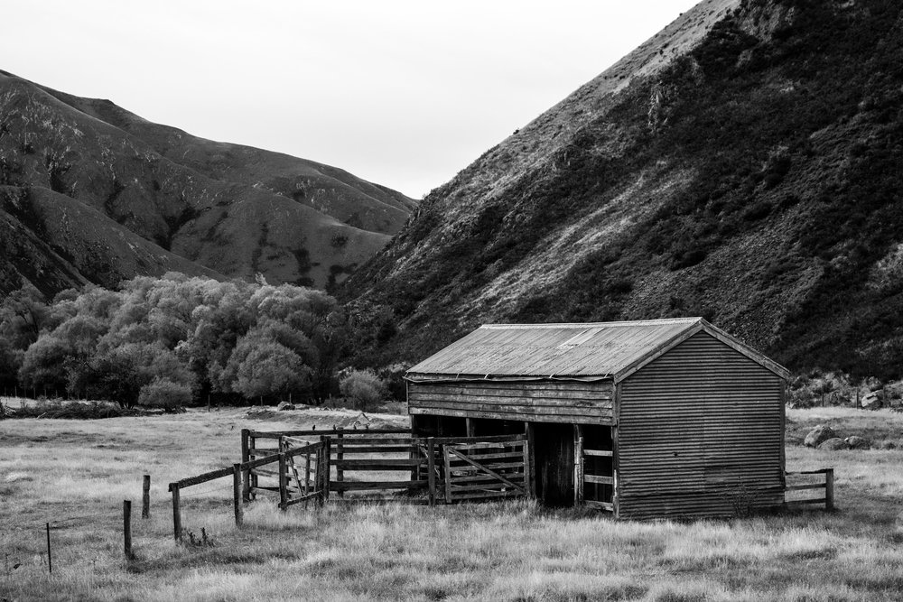 old Shed on the Ashburton Gorge Road