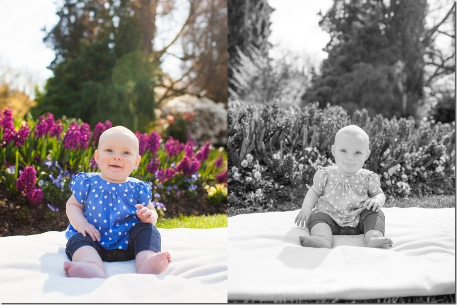03-Mielle Seven Month Gallery