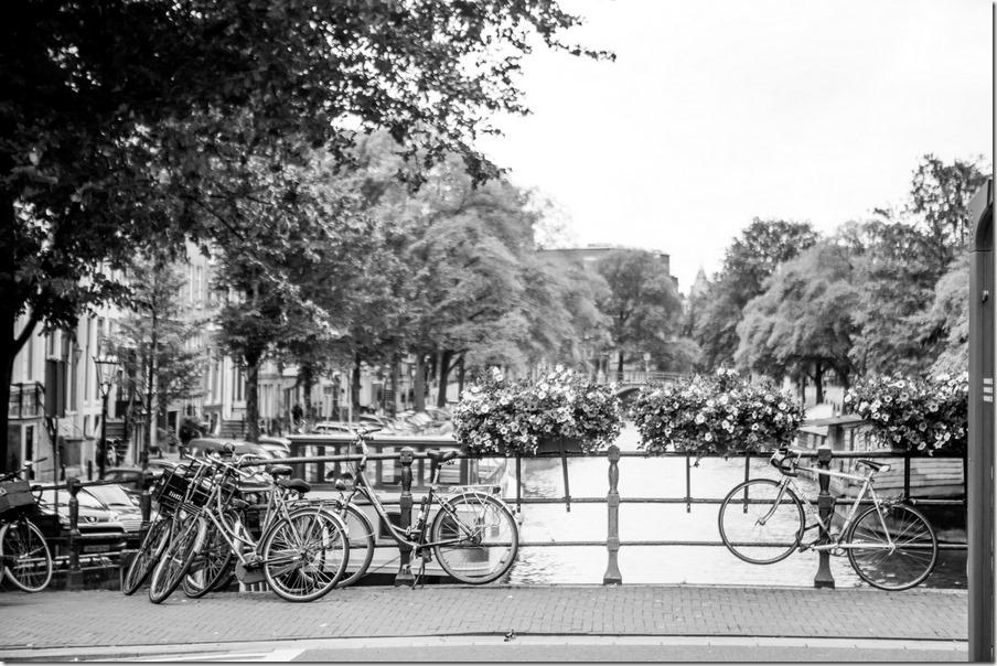 026-holland-109
