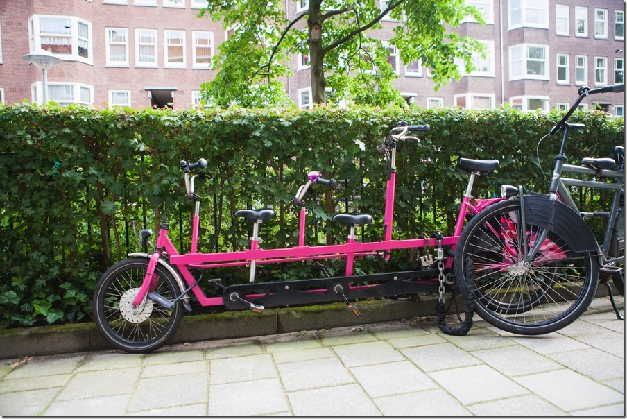 036-holland-131