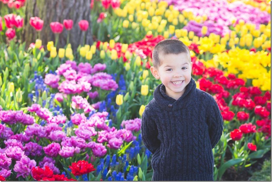 37-tulips-24