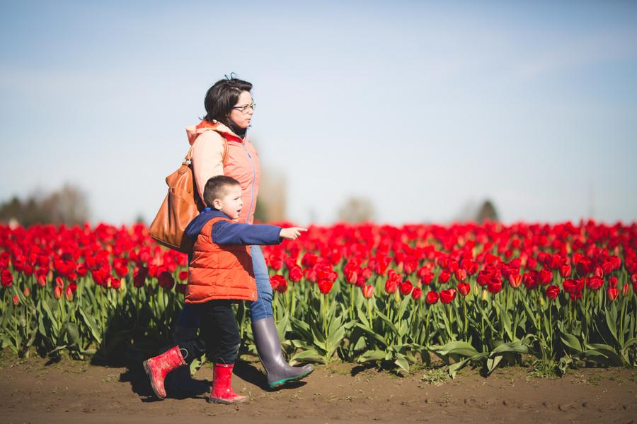 07-tulip-23.jpg
