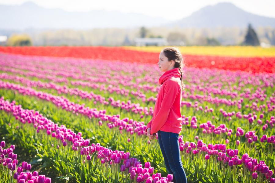 11-tulip-41.jpg