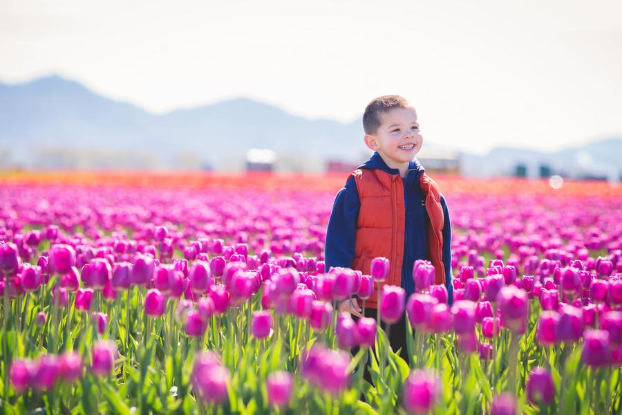16-tulip-59.jpg