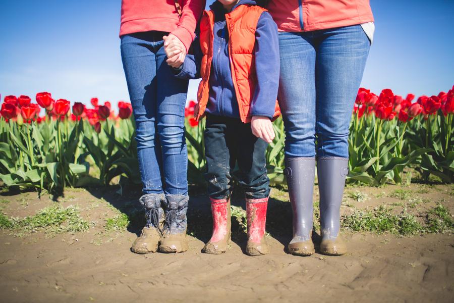 21-tulip-73.jpg