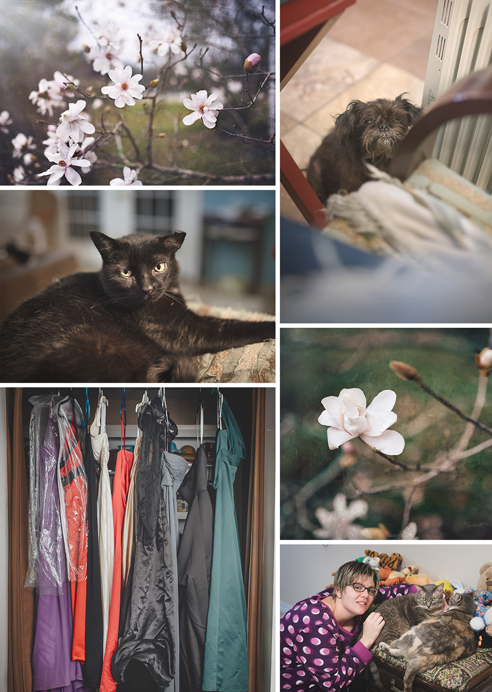 A few more of my week 2 favs: Japanese cherry blossoms from my in-laws tree - one of my favorite flowers; my fur baby, Aro, has taken over my editing chair; Scrappy still freezing; my collection of new dresses for conceptual shoots (yes, I have a dress buying addiction); my sister with her fur babies.