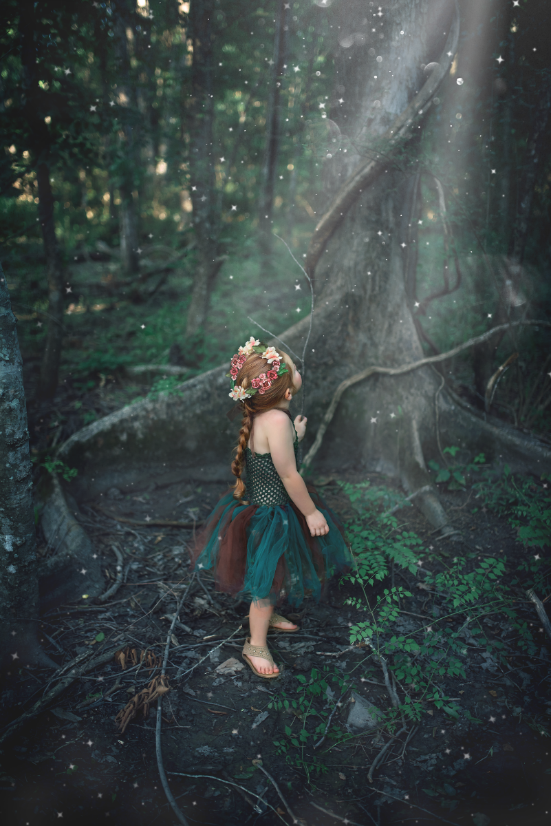 woodland_204-Edit.png