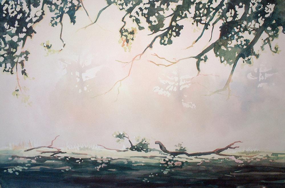 fogtrees2.jpg