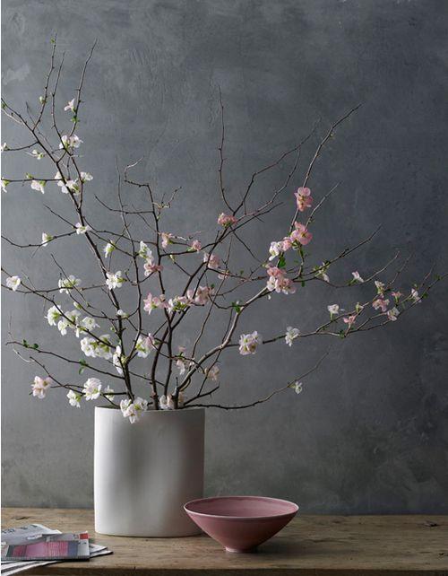rose pink.jpg
