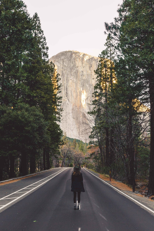 Roads of Yosemite