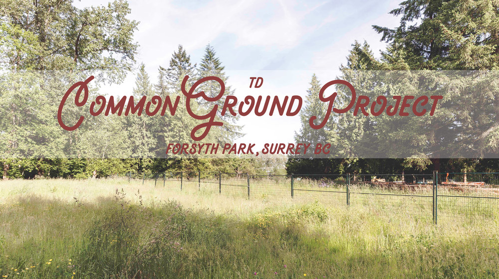 TD Common Ground Project
