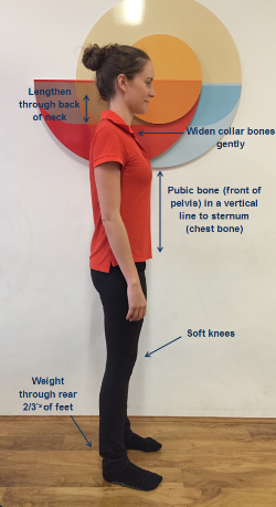 Simple Standing Posture Checklist   (Refer to picture)    ü     Weight through rear two thirds of heels   ü     Soft knees   ü     Pubic bone (front of pelvis) in a vertical line to sternum (chest bone)   ü     Widen collar bones gently   ü     Lengthen through back of neck
