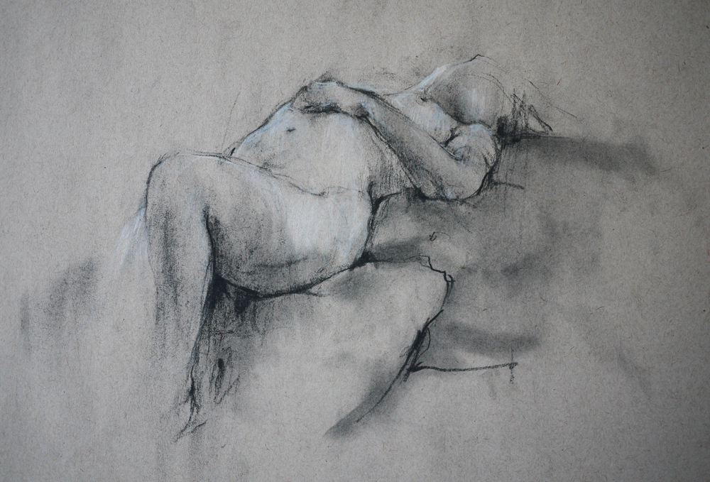 2014  Charcoal & Pencil on Paper  27cm x 24cm