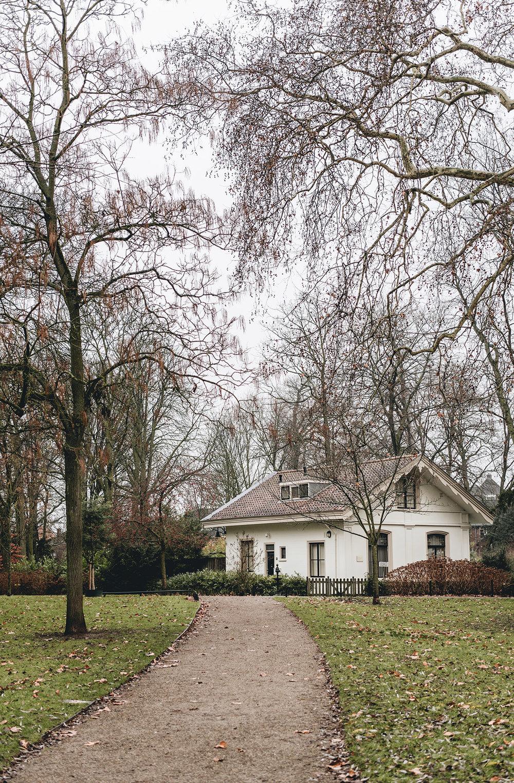 Winter-January-Park-Patricia-Martins-2019