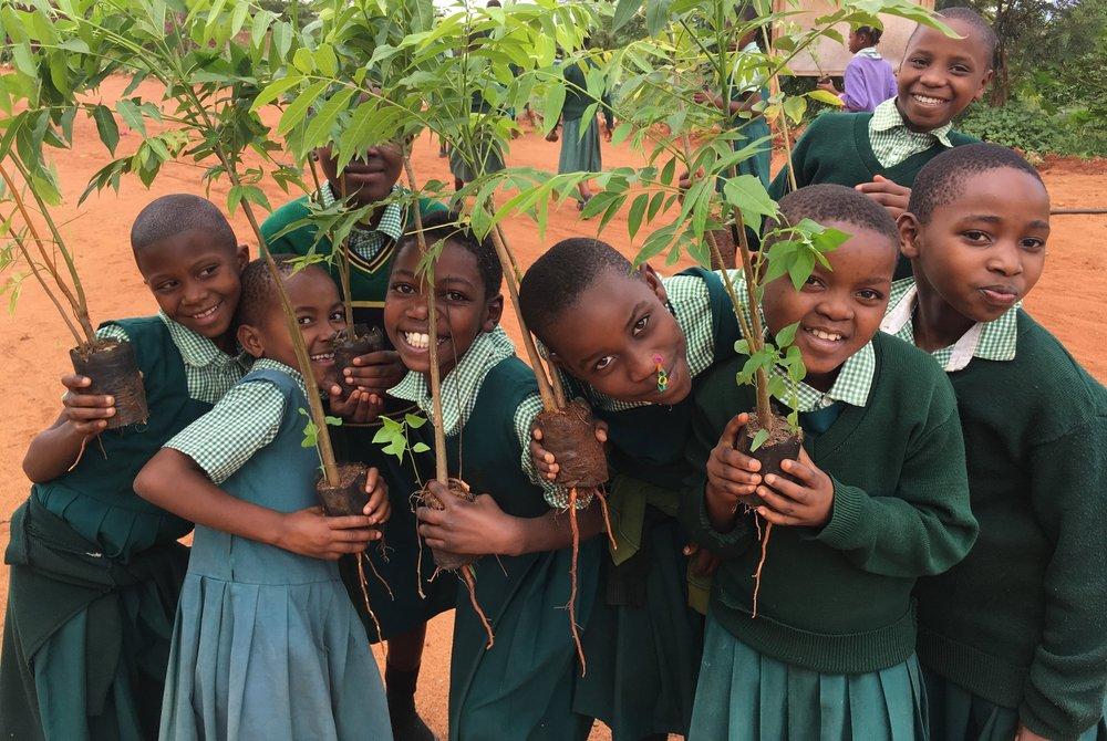 Primary 4 girls planting trees around the school land!  Photo: HC