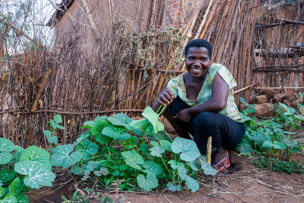"""""""The permaculture training opened my eyes to what is possible. All this time I have been struggling away, buying expensive chemicals fertilisers and things, when all the answers were around me for free! It's given me even more confidence in myself as a woman and in my ability to be independent.""""   Mach, Safina Women's Group"""