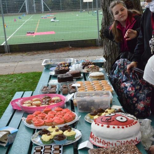 rednose challenge cake1.jpg
