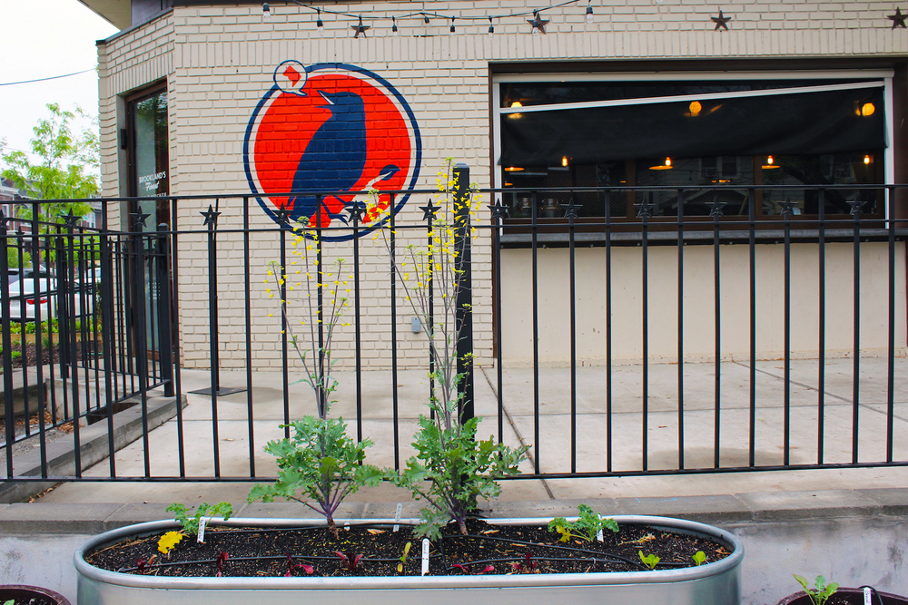A barrel garden installed by Love & Carrots outside of Brookland's Finest in northeast D.C. (Photo by Robin Dienel).