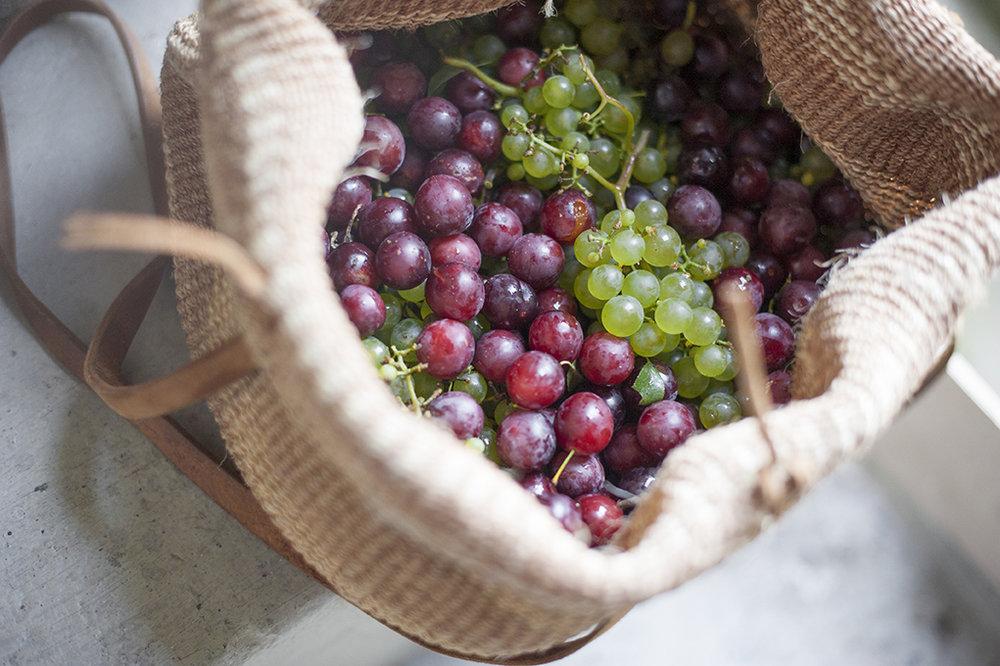 Ernten, Schenken, Teilen, Tauschen