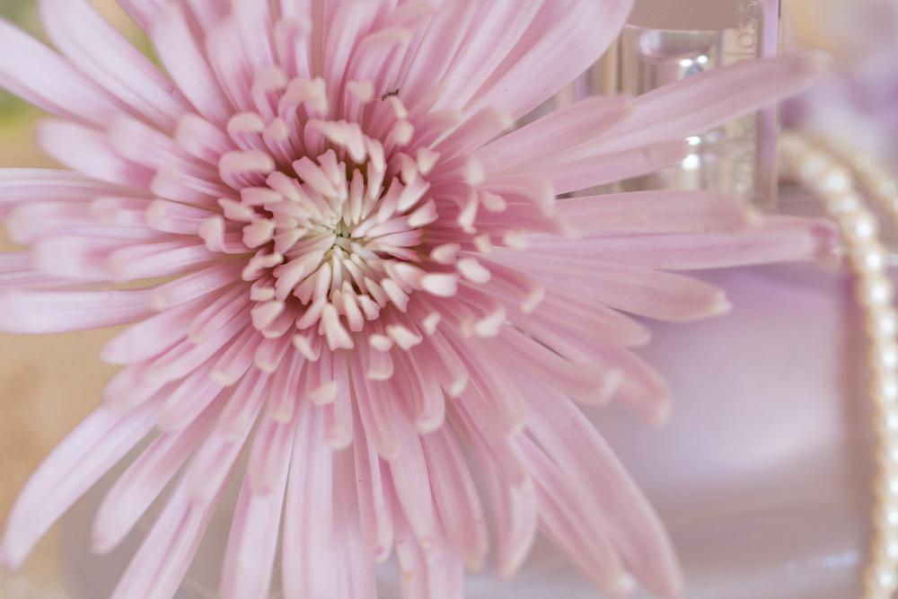 Perfume and Stock Flowers (5 of 11).jpg