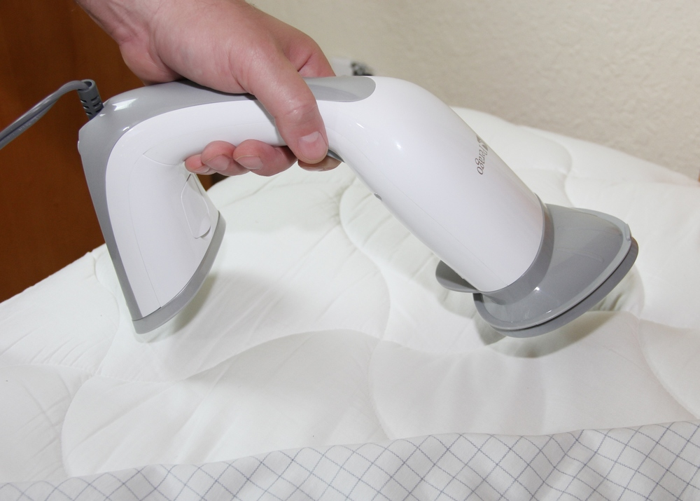 Kills Bed Bugs and Eggs