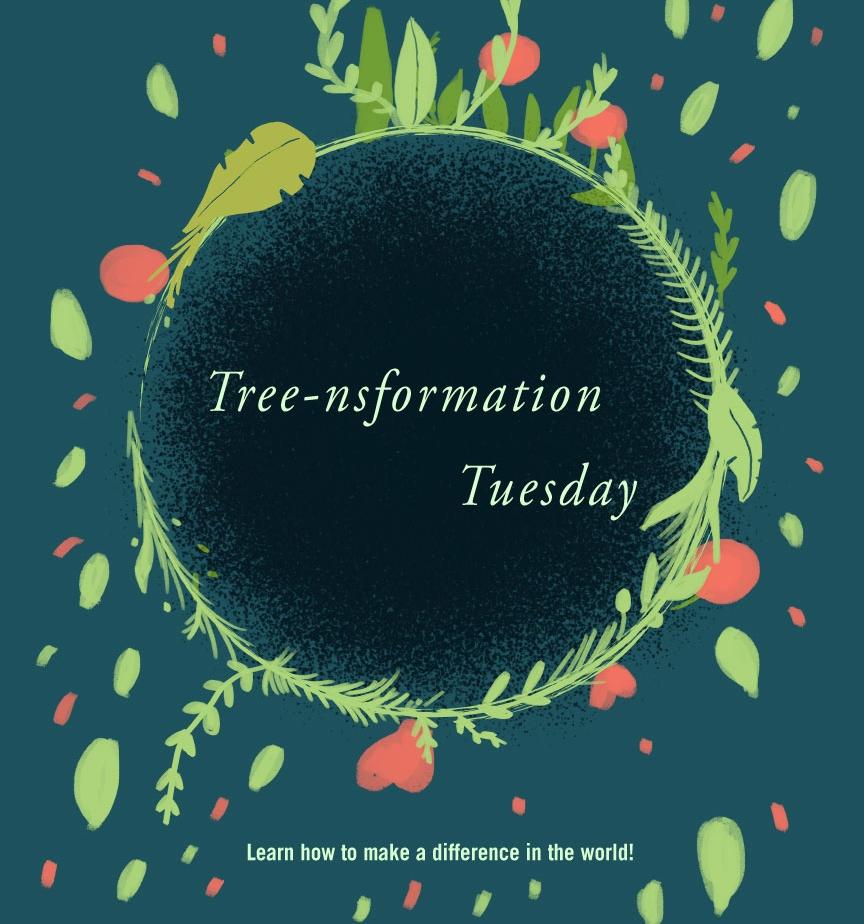 april17_treesformation_web.jpg