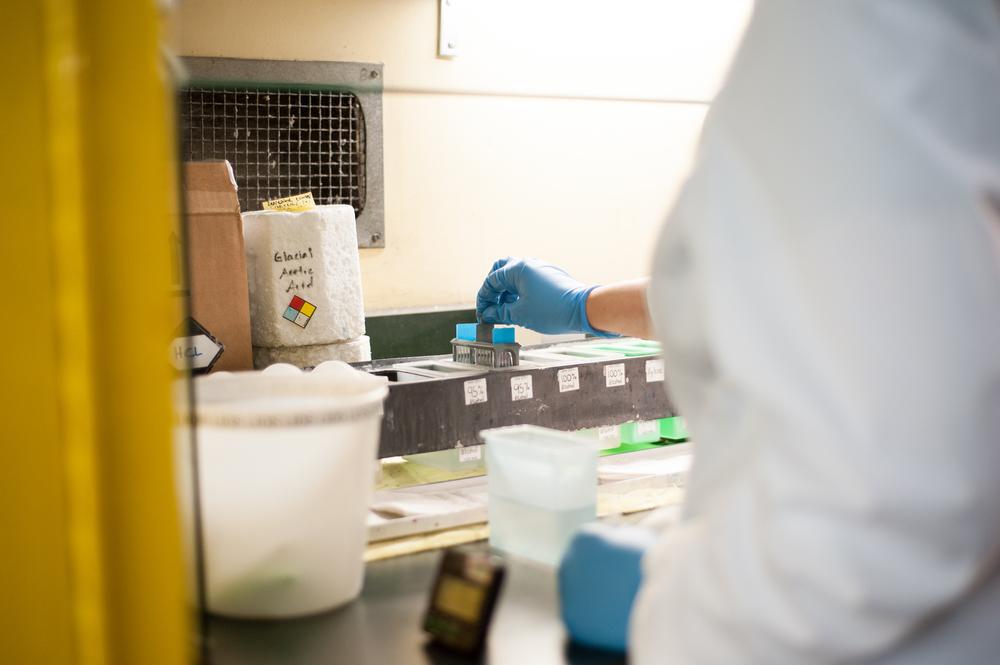 PSIP Lab-34.jpg