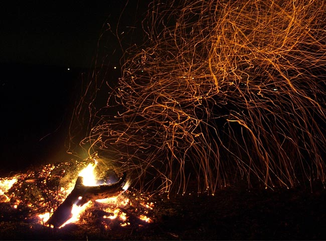 write_thumbnail_what-fires-your-future_650x480.jpg