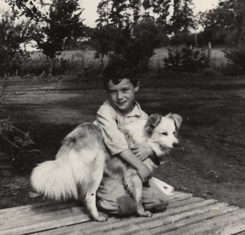 child with dog in legacy photo