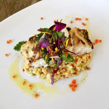Bass Couscous                     Pair With Nº 19 Chardonnay