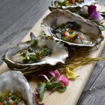 Oysters on the Half Shell                     Pair With Nº 19 Chardonnay