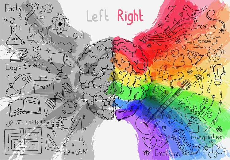 Left-vs-Right-Brain.jpg