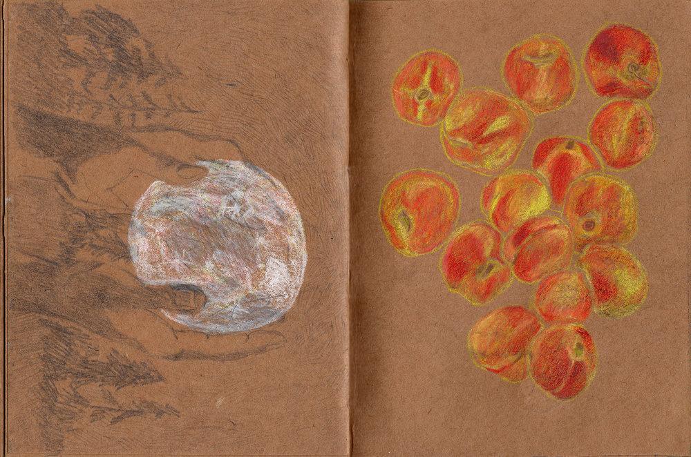 sketchbook_26.jpg