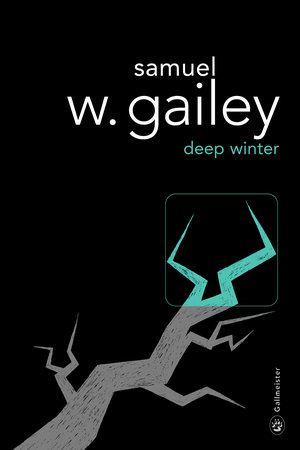 American-Authors-In-France-Gallmeister_Cover-Deep-WINTER.jpg