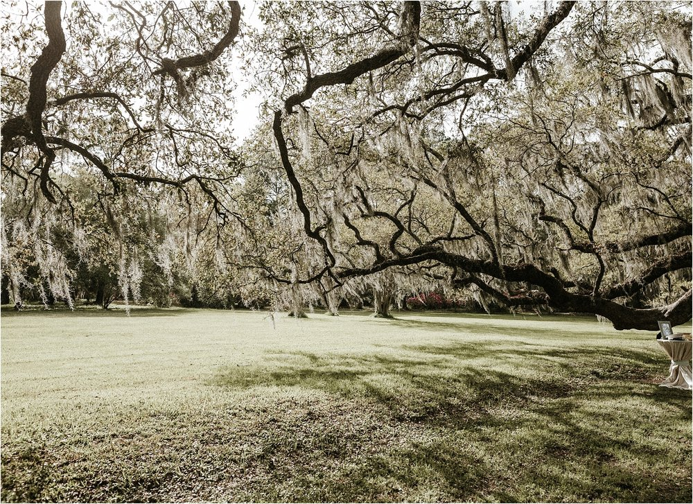 Magnolia-Plantation-charleston-elopement-photographer_0043.jpg