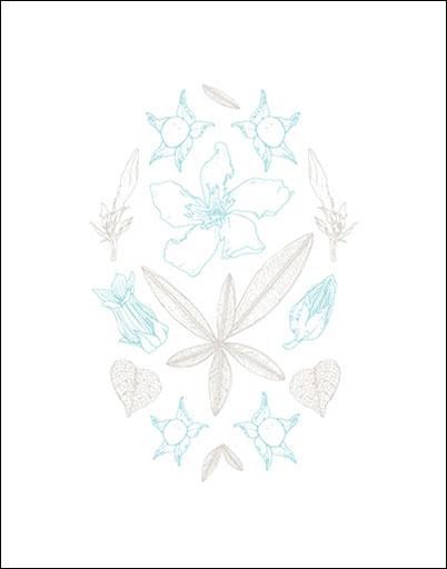Botanicals: Wall Print