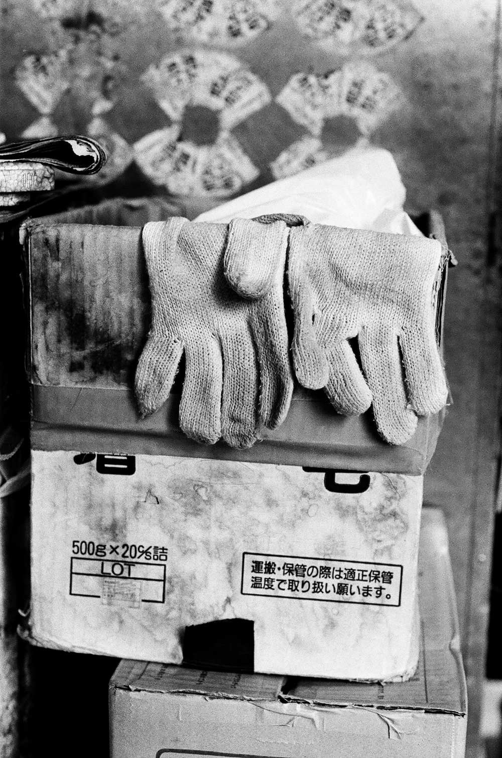 14.4 Japan 2014 Fish Market Glove II copy.jpg