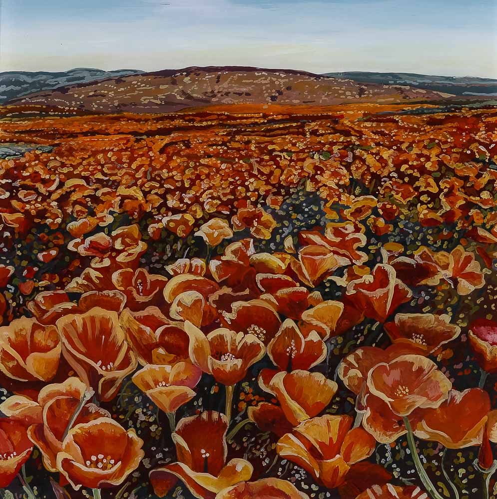Desert Poppy Carpet  Acrylic on plexiglass 12in x 12in 2015
