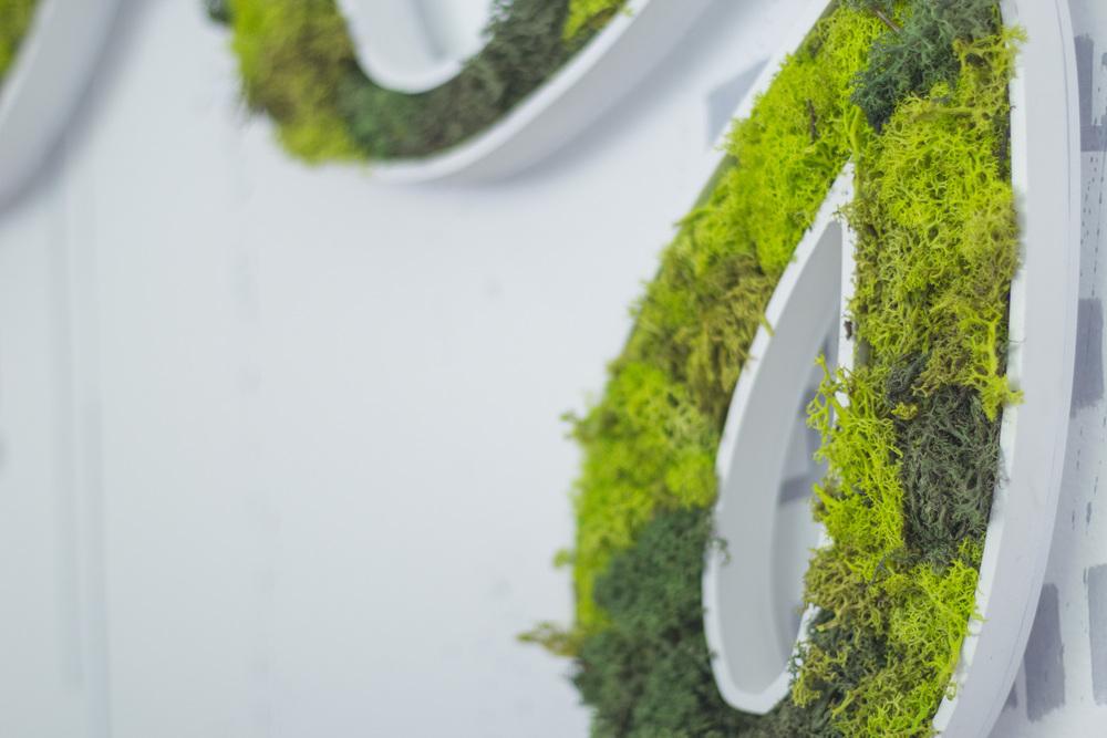 typography-moss.jpg