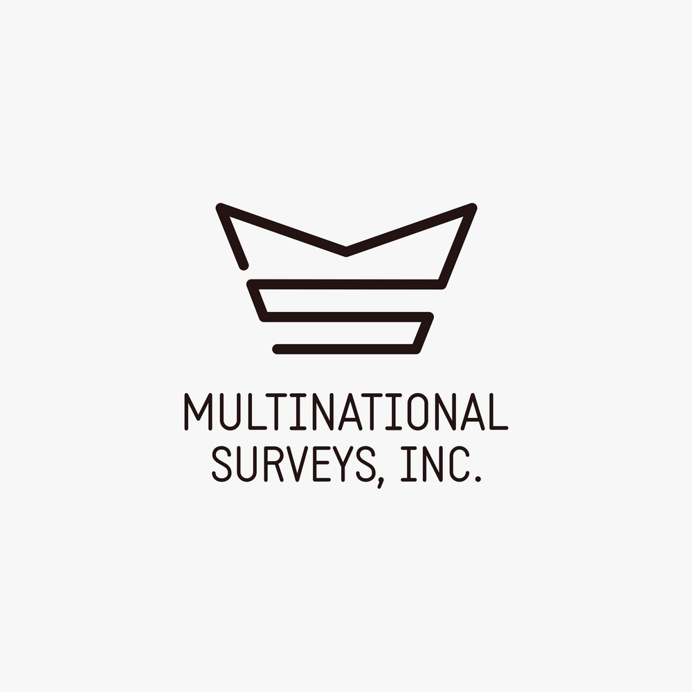 multinational-surveys-logo-design-by-create.jpg