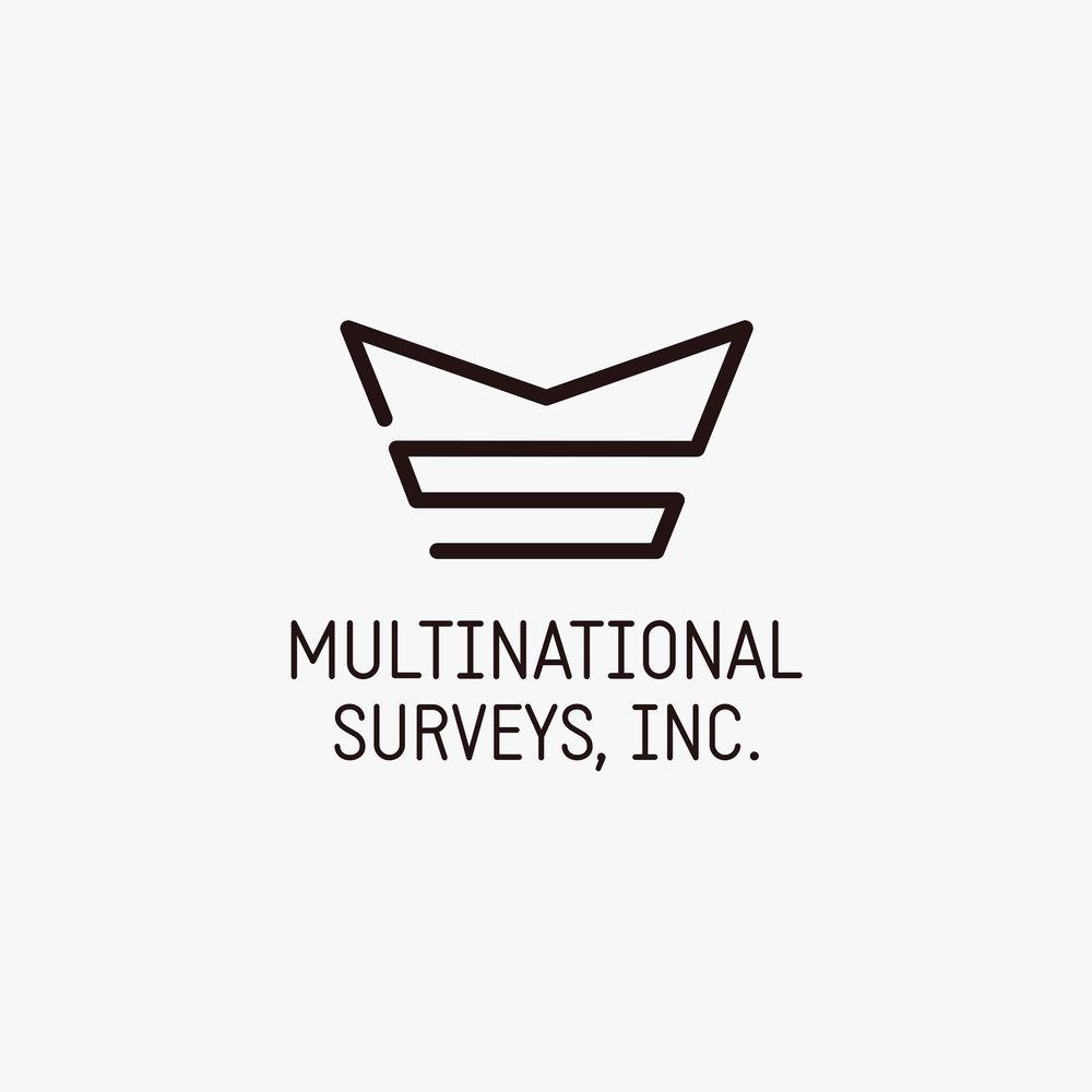 multinational-surveys-logo-design-by-create.jpg