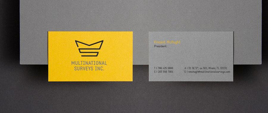 identity-design-multinational-surveys-logo_900.jpg