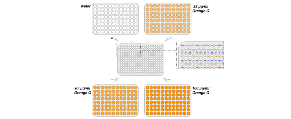 "Figure 1 Schematic of plate source/destination co-ordinates. Distilled water dye solutions were transferred from 96-well source plates using the High Throughput Pipetting Quick Instruction to quadrants 0, 1, 2 and 3 (denoted e.g. as ""Q0"" etc.) of 384-well analysis plates. Absorbance measurements at 475 nm were used to assess pipetting uniformity across wells."