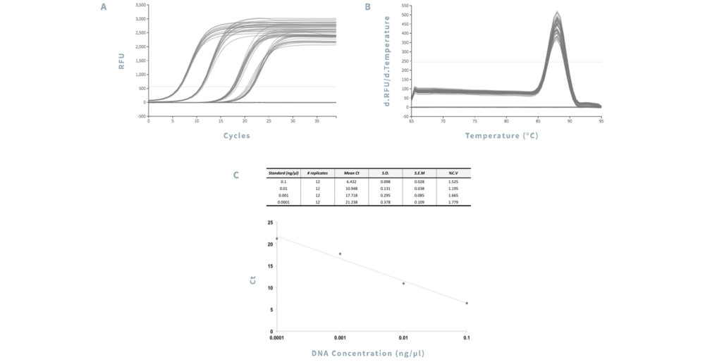 Figure 1  (A) Amplification of DNA depicted as relative fluorescent units (RFU) vs. cycle number.  (B) Melt peak analysis ([derivative RFU / derivative temperature] vs. temperature).  Twelve replicates for each DNA standard were assessed.  (C) Statistical analysis of cycle threshold (Ct) data. S.D.: standrad deviation. S.E.M.: standard error of the mean. %C.V.: percentage coefficient of variance.  Error bars: S.E.M..