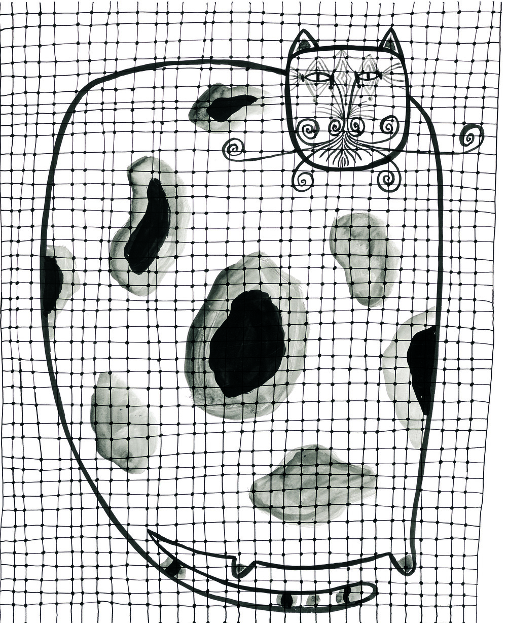 Large Cat Cage    Ink on paper 1957