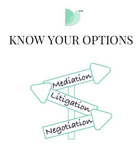Divorce Process Options