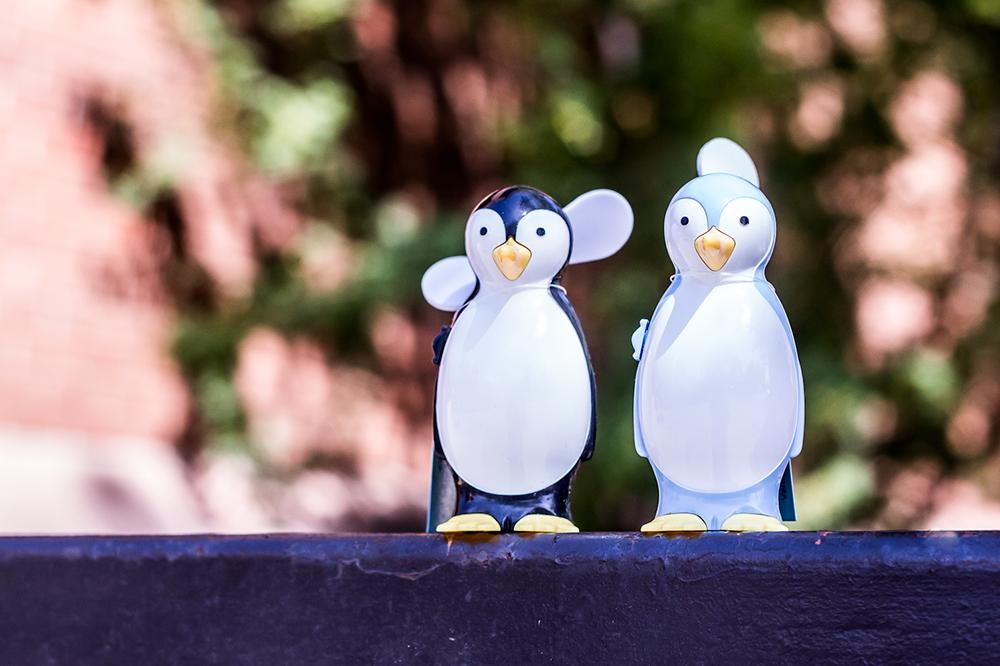 handheld penguin fans
