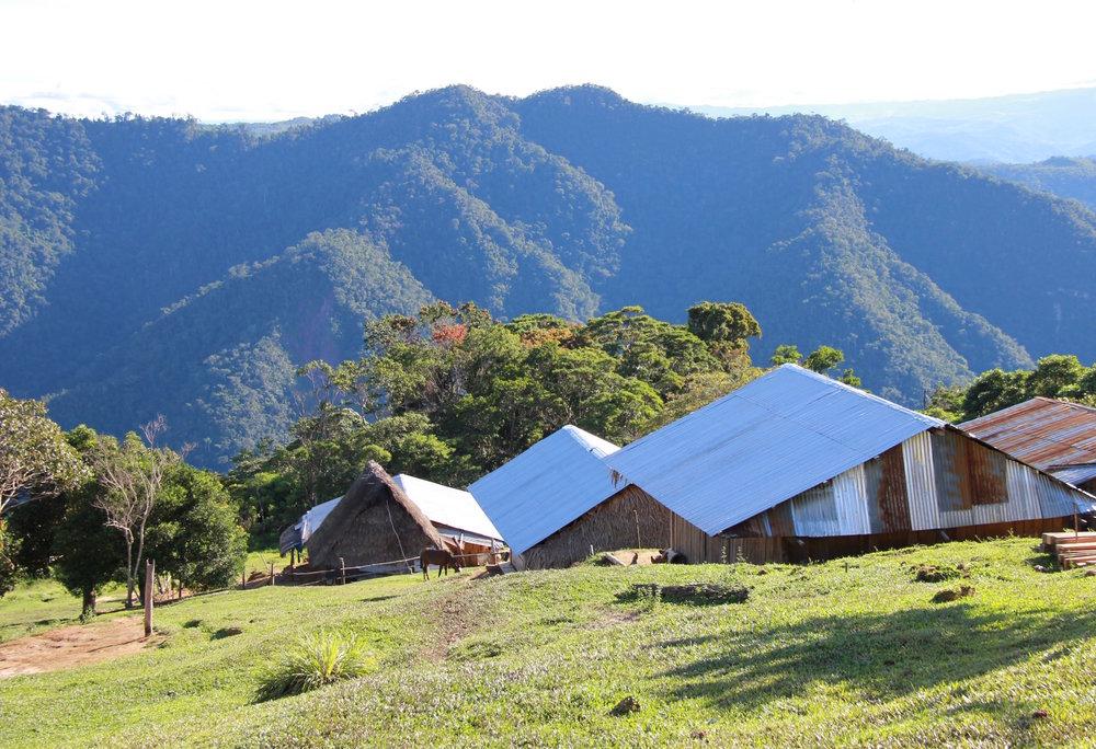 Peru Vista.jpg